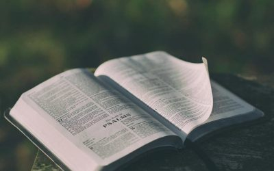 Why the Bible Still Matters